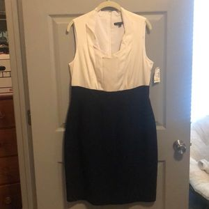 Navy and white business professional dress
